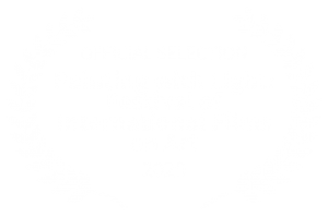 OFFICIAL SELECTION - Painting with Light Festival of International Films on Art - 2020