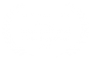 OFFICIAL SELECTION - Tokyo International Film Festival - 2020
