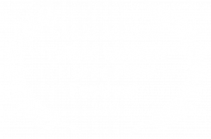 OFFICIAL SELECTION - Taipei Golden Horse Film Festival - 2020