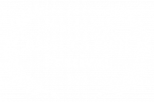 Official Selection - Asiatica Film Festival - 2020
