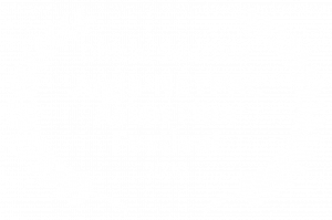 Official Selection - Jogja-NETPAC Asian Film Festival - 2020