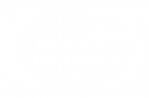 Official Selection - Sanctuary Film Festival - 2020