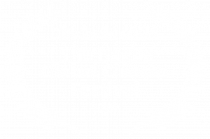 Official Selection - The Hague Global Cinema Festival - 2020