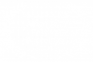 OFFICIAL SELECTION - Asian Film Festival Barcelona - 2020